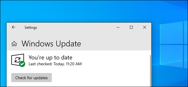 "Windows Update的2019年5月更新中的Windows Update的""检查更新""按钮"